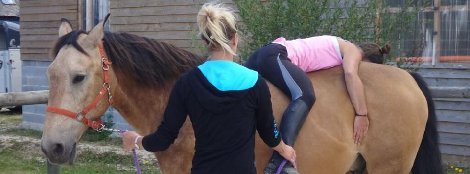 Horse Harmonie